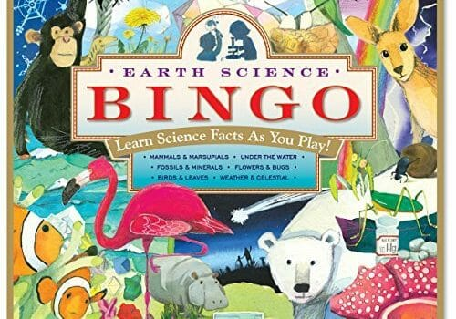 Earth Science Bingo Review, Gameschooling & Secular Homeschooling @ HomeschoolGameschool.com