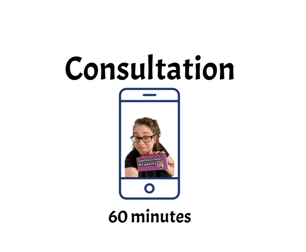 Private Gameschooling Consultation